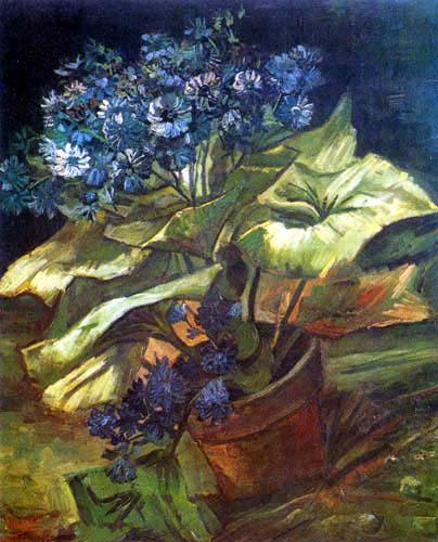 Vincent van Gogh - Blumentopf mit Aschenkraut