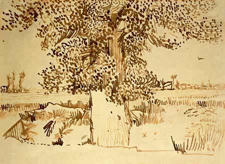 Vincent van Gogh - Ein Baumstamm