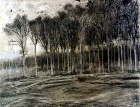 Vincent van Gogh - View of a Forest