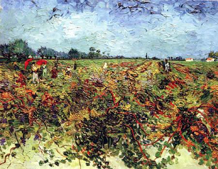 Vincent van Gogh - The Green Vineyard