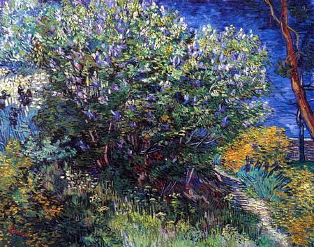 Vincent van Gogh - Fliederstrauch
