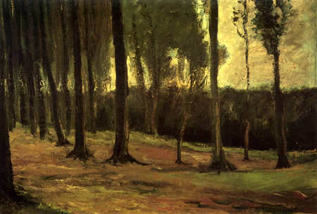 Vincent van Gogh - Edge of a forest
