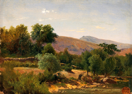Carlos de Haes - A Forest near of the Monasterio de Piedra