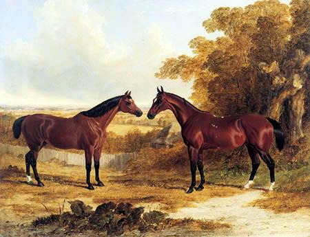 John Frederick Herring, Snr. - Two favourite Hunters of John Scott