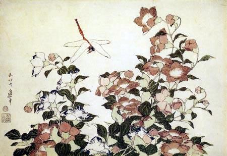 Katsushika Hokusai - Glockenblumen und Libelle
