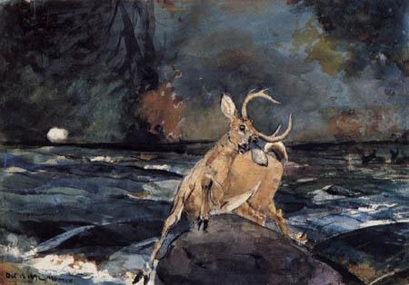 Winslow Homer - Ein guter Schuß