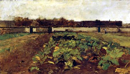 Eugen Jettel - Cabbage field in Barbizon