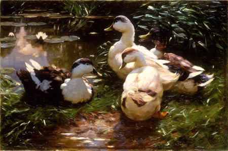 Alexander Koester - Ducks at the sea-rose pond