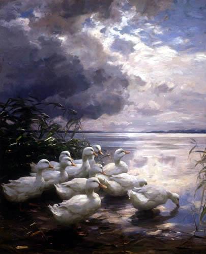 Alexander Koester - Ducks at the lakeshore