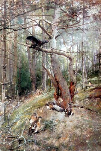 Christian Kröner - Wood grouse