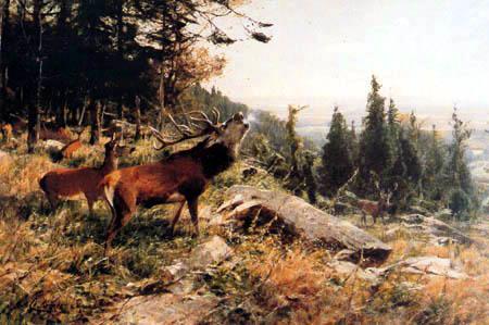 Christian Kröner - Deer herd at the edge of forest