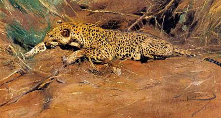 Wilhelm Kuhnert - Leopardo descansando