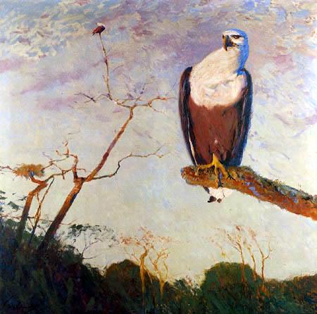 Wilhelm Kuhnert - White-tailed eagle