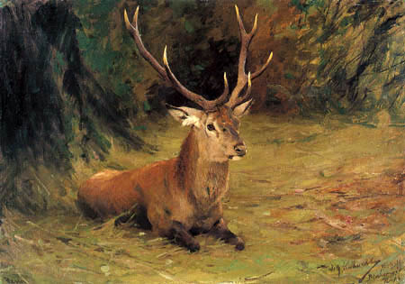 Wilhelm Kuhnert - Resting deer
