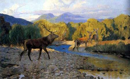 Wilhelm Kuhnert - Old bull