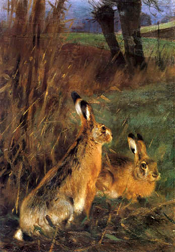 Wilhelm Kuhnert - Two hares
