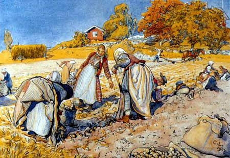 Carl Olof Larsson - Potato harvest