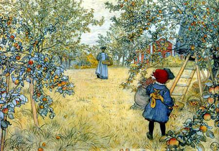 Carl Olof Larsson - Moisson des pommes