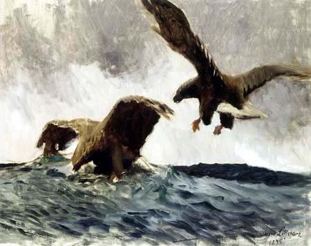 Bruno Liljefors - Sea Eagles Hunting