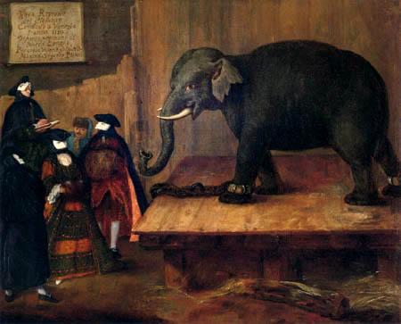 Pietro Longhi - Der Elefant