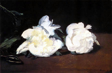 Edouard Manet - Zweig mit weissen Pfingstrosen