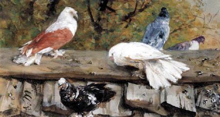Adolph von (Adolf) Menzel - Tauben auf einem Holzdach