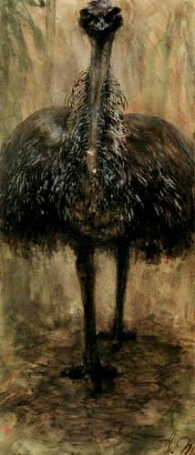 Adolph von (Adolf) Menzel - Der Emu