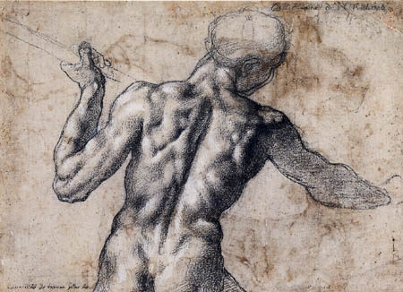 Michelangelo - Back view of a male nude