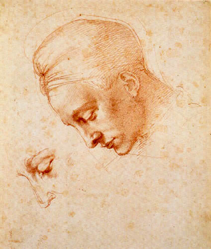 Michelangelo - Face Study to Leda