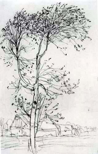 Otto Modersohn - Eine Birke im Wind