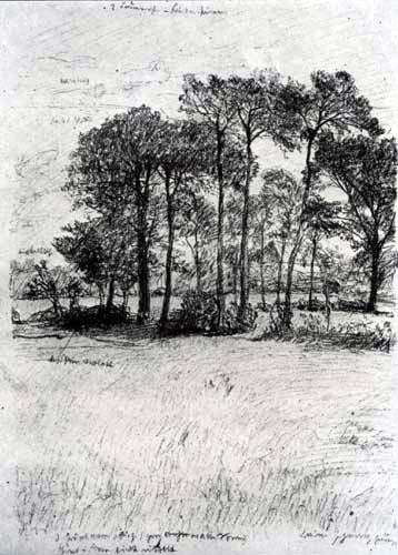 Otto Modersohn - Prairie d'été avec des arbres