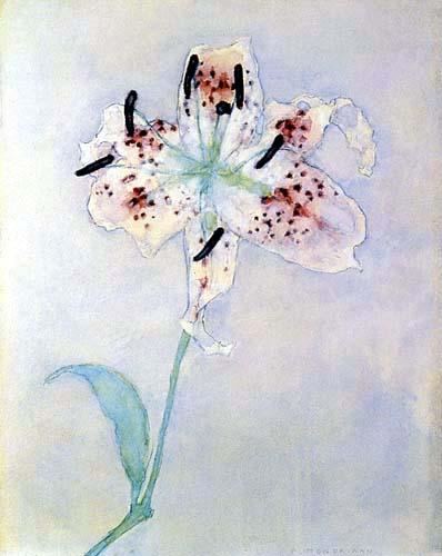 Piet Mondrian - Lilie
