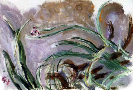 Claude Oscar Monet - Iris