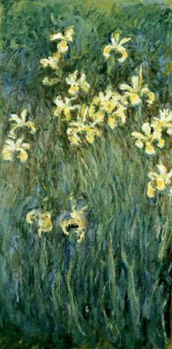 Claude Oscar Monet - Gelbe Iris