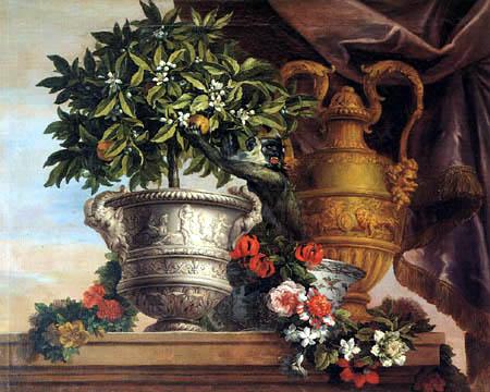 Jean Baptiste Monnoyer - Stilleben mit Orangenbaum