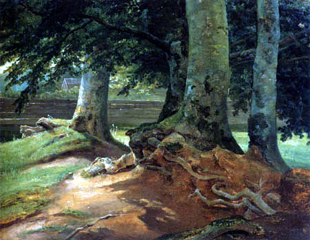 Christian Morgenstern - Beech Trees in Frederiksdal, Kopenhagen