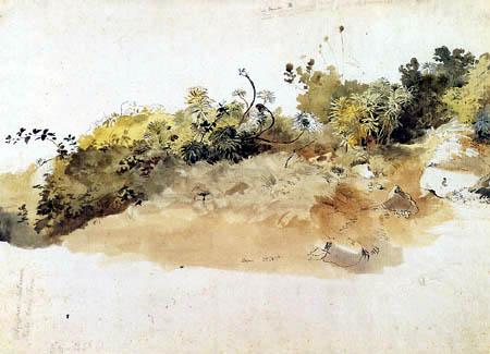 Friedrich Nerly (Nehrlich) - Meadow