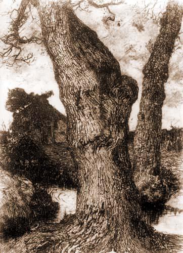 Fritz Overbeck - Un tronc d'arbre de chêne