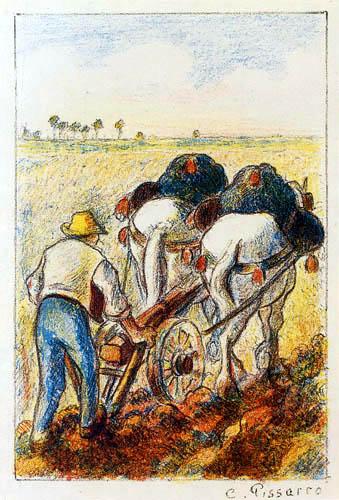 Camille Pissarro - Fermier
