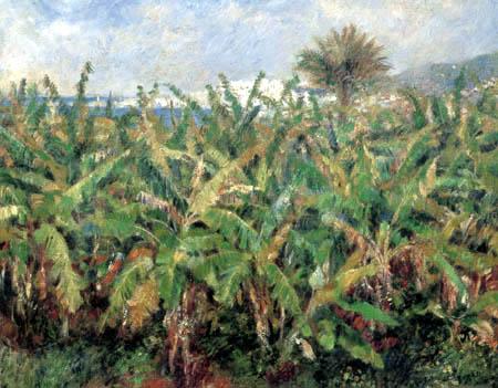 Pierre Auguste Renoir - Banana plantation