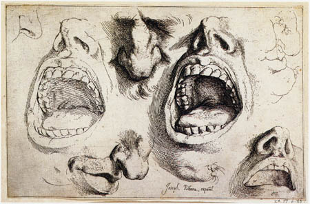 Jusepe (José) de Ribera - Studies of noses and mouths