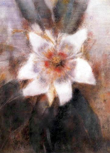 Christian Rohlfs - Magnolie von San Materno