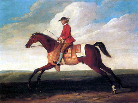 Richard Roper - Aaron, A Bay Racehorse Exercising with Jockey Up