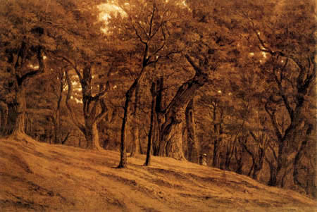 Théodore P. E. Rousseau - Im Wald von Fontainebleau
