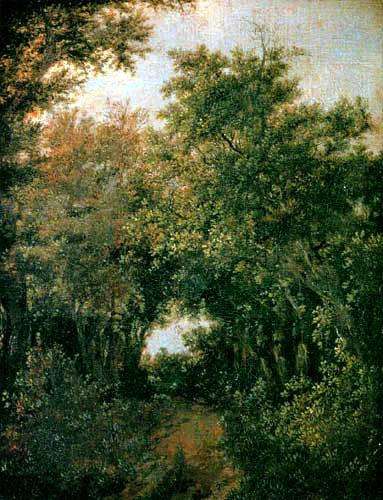 Jacob Isaack van Ruisdael - Kleiner Waldweg