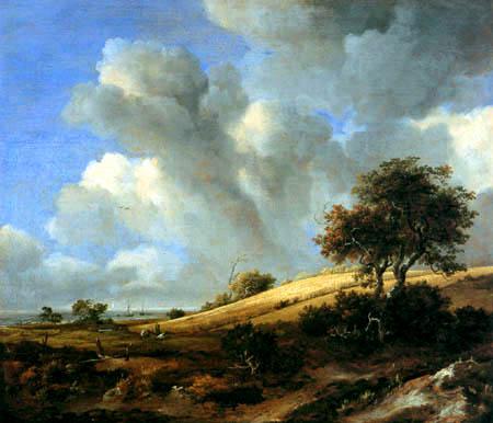 Jacob Isaack van Ruisdael - Cornfield