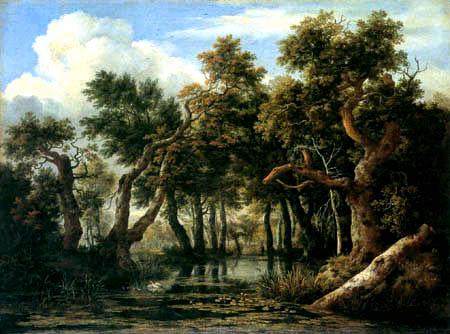 Jacob Isaack van Ruisdael - A forest swamp