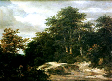 Jacob Isaack van Ruisdael - Wooded landscape