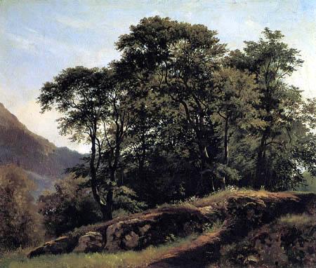 Iwan Schischkin - Beech grove in Switzerland