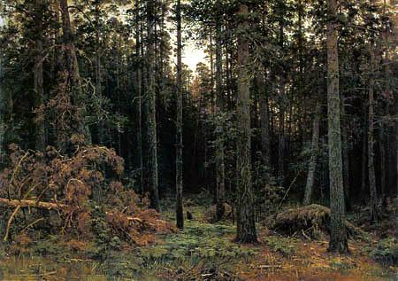 Iwan Schischkin - Bosque de pino
